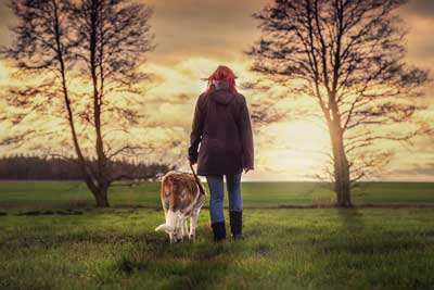 Benefits of Dog Walking for your dog's health